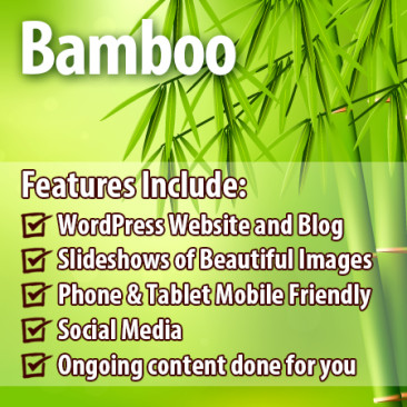 Bamboo Package