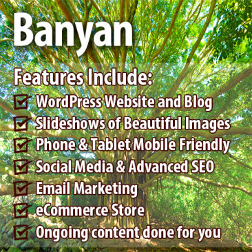Banyan Package