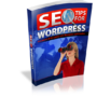 SEO-Tips-For-Wordpress-500