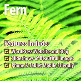 Fern Package